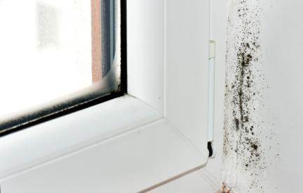 Fenster beschlagen was kann man dagegen tun - Fenster beschlagen was tun ...