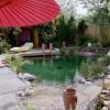 Mediterrane-Gartengestaltung-1