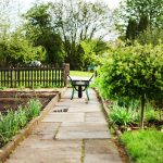 Gartenteilung und Sichtschutz durch Hecken