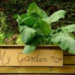 Mit einem Hochbeet den Garten neu nutzen